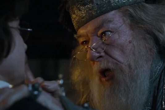 harry potter coupe de feu dumbledore